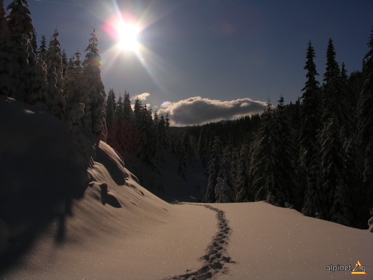 Calea către lumină