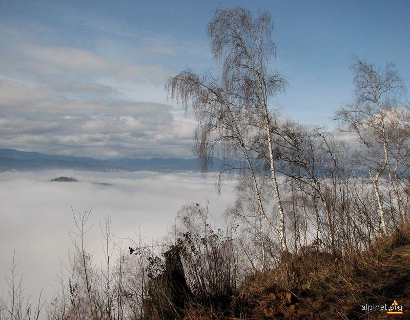 Dragon în ceaţă