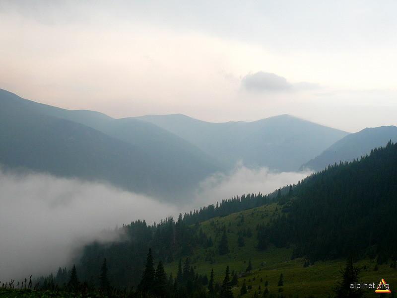 Privind in Valea Lapusnicului