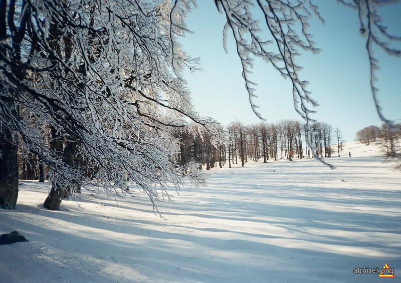 Poveste de iarna...in Semenic