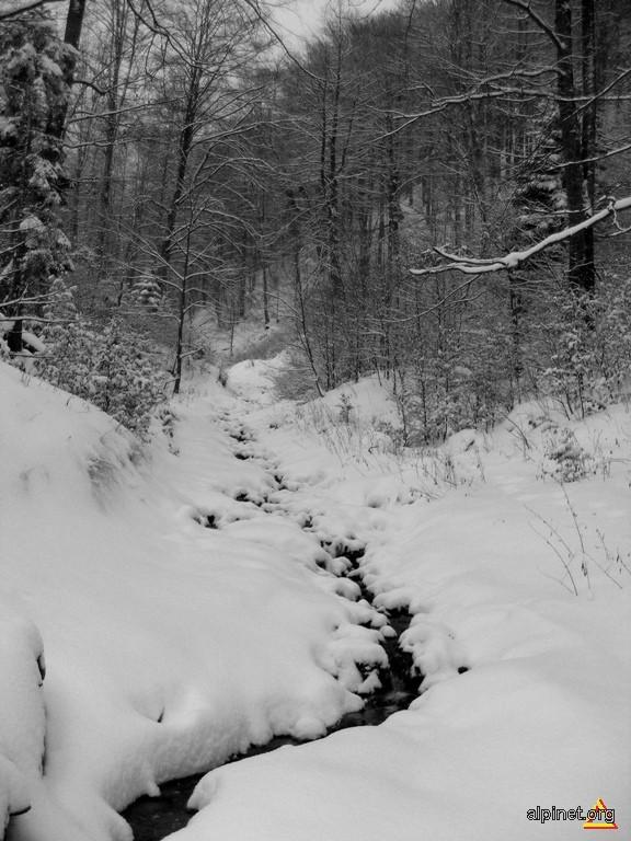Iarnă în alb şi negru