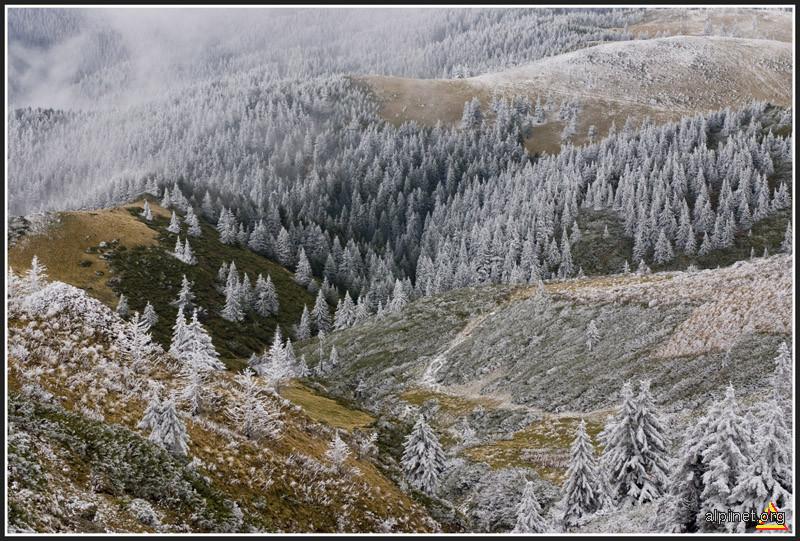 Adunare pentru Sfatul de Iarna