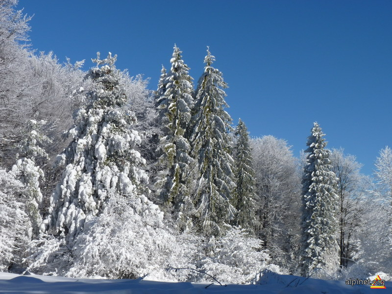 Iarna...