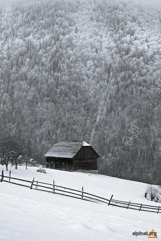 Liniste de iarna