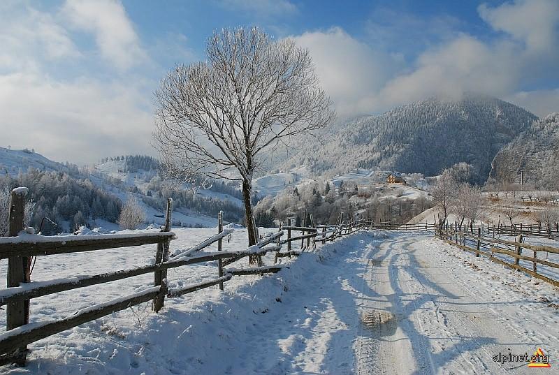 Povesti de iarna (3)