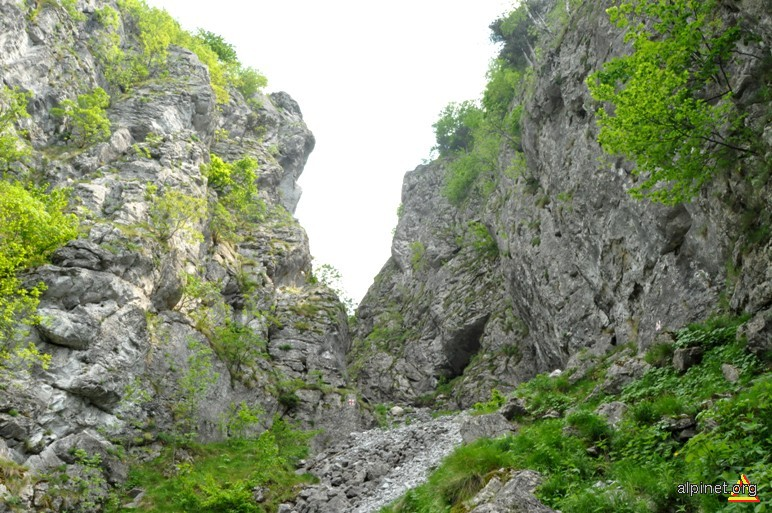 Cheile Tâmnei
