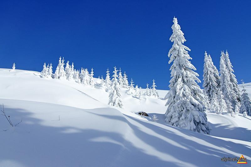 Feeria albă a Muntelui Mic