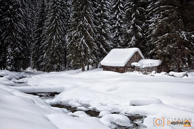 Iarna pe Cheile Jieţului