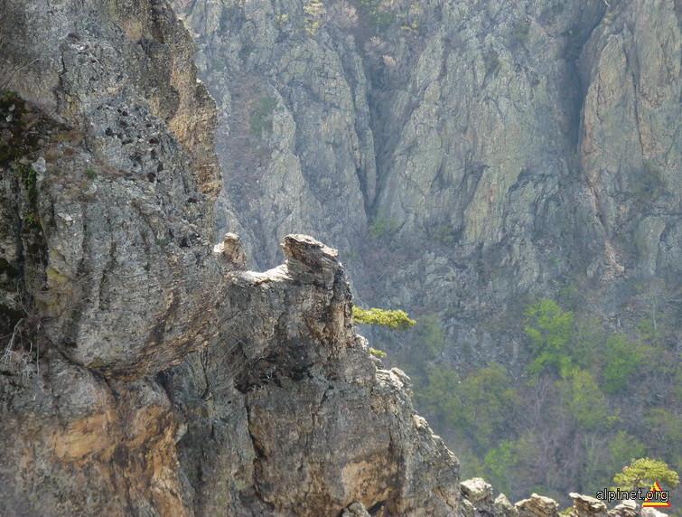 Sculpturi ale naturii in stanca... Trescovat