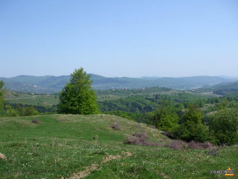 Vedere spre Valea Prahovei