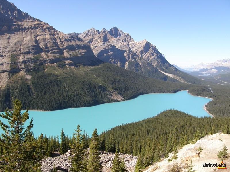 Lacul Peyto, Munții Stâncoși, Parcul Național Banff, Canada