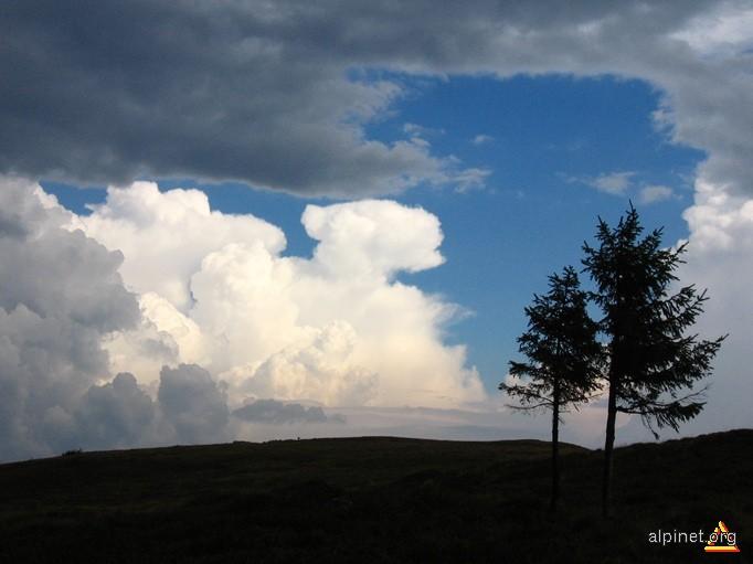 Singurii printre nori