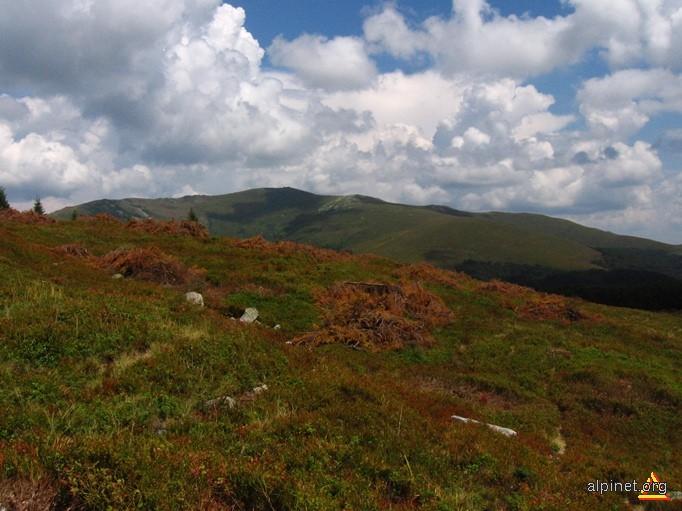 Panorama spre Muntele Coarnele(din apropierea de Vf. Șigleul Mic)