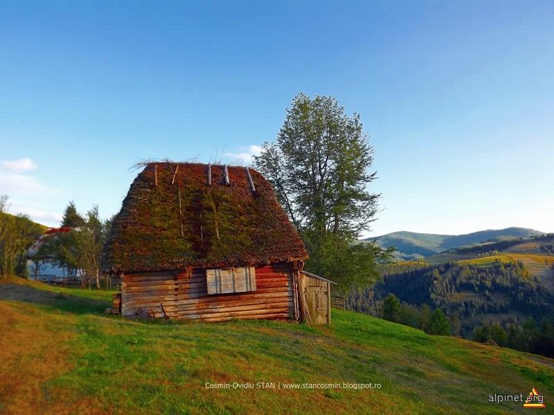 Poiată tradiţională cu acoperiş de cetină