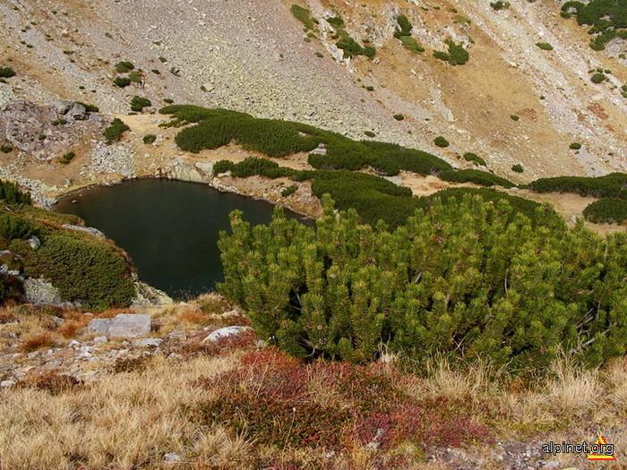 Lacul Gugu