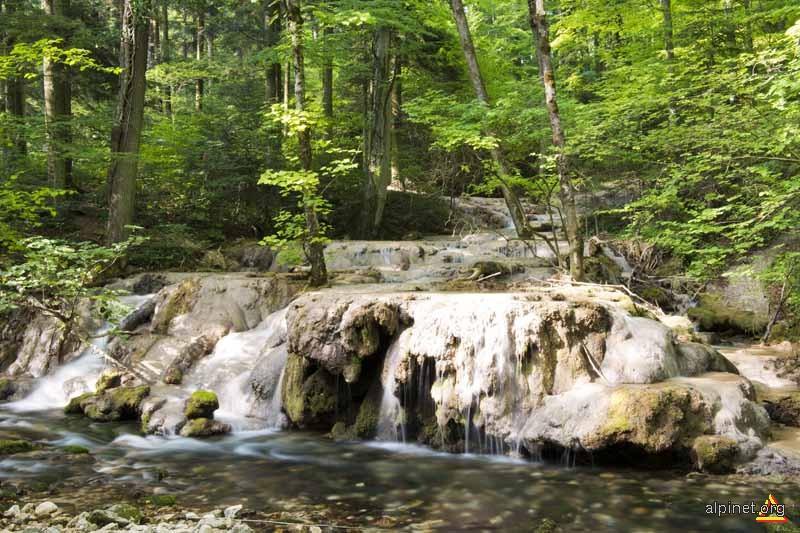 Cascade Valea Beusnitei