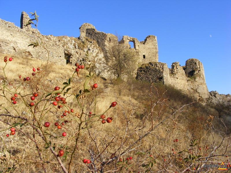 Cetatea Trascăului sec-XIII