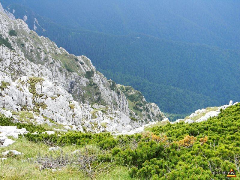Versantul spre Valea Bârsei