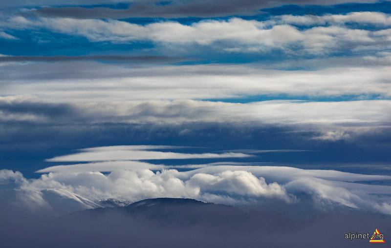 Tarâmul norilor albi