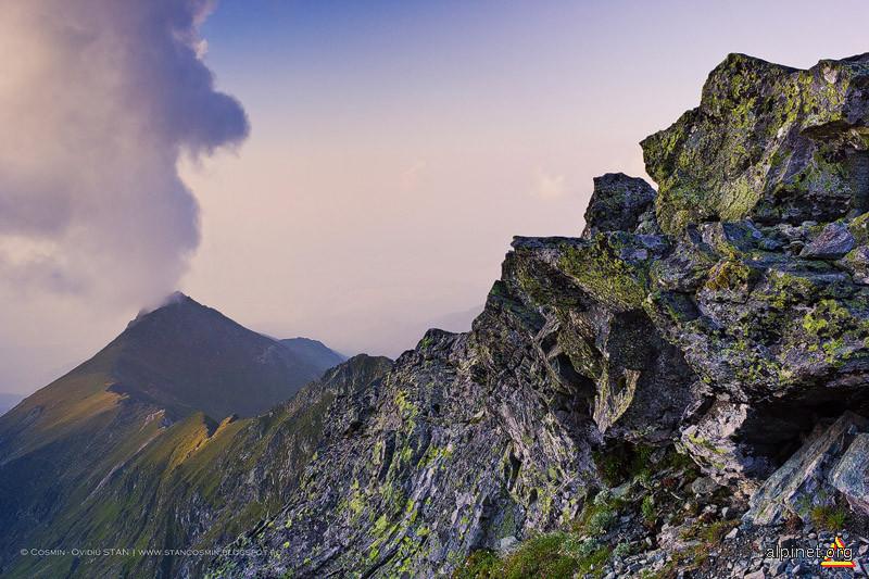 Erupţia