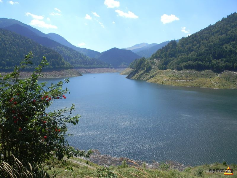 Lacul Gura Apelor