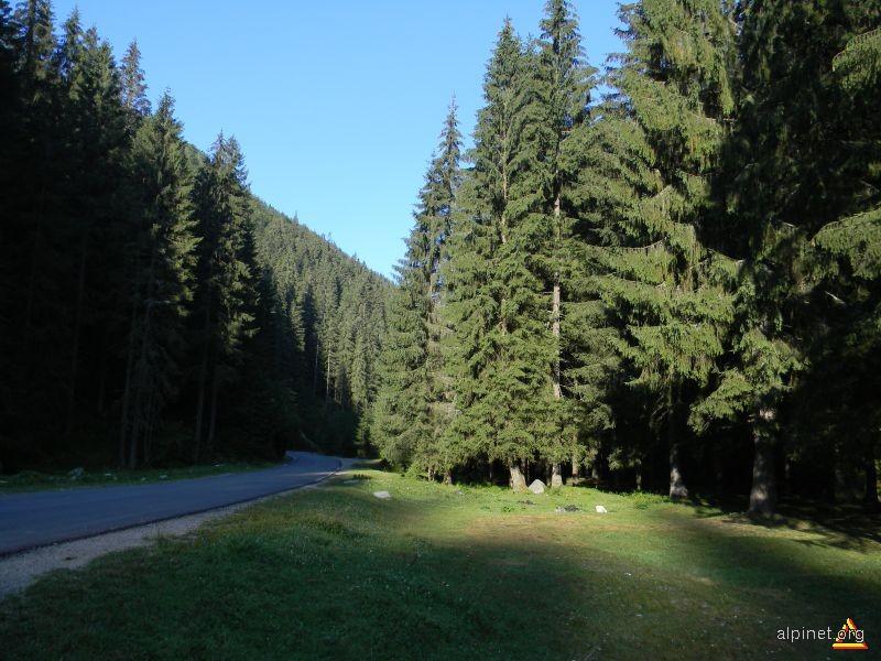 Valea Jieţului