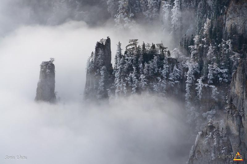 Castelul din nori