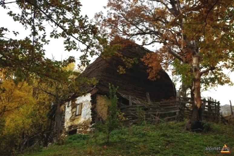 Cabana de vara