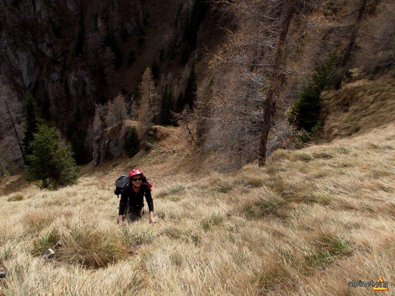 In Valea Spumoasă