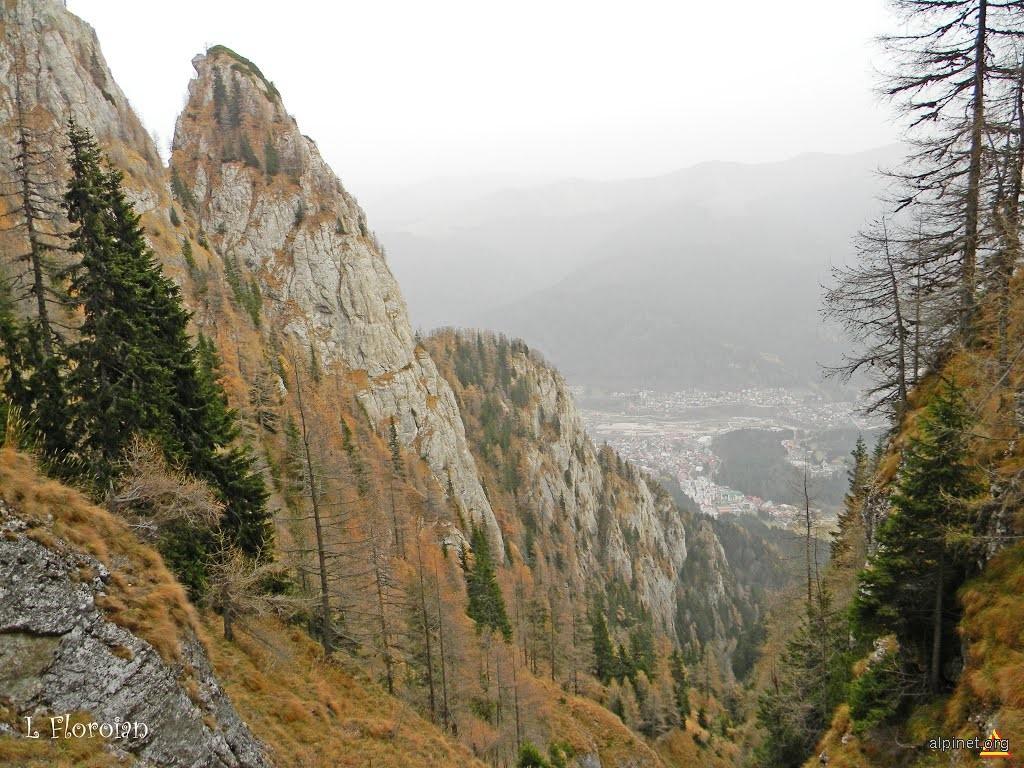 Valea Spumoasă
