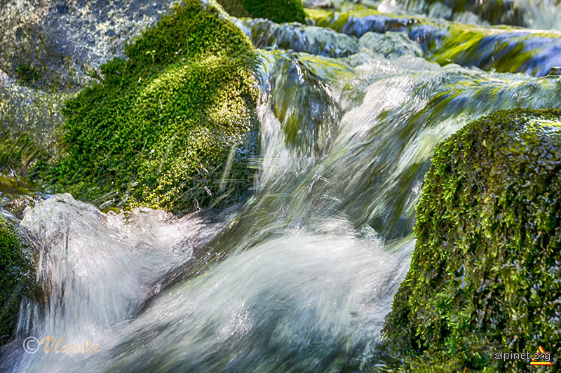 Culori de smarald pe pârâul Chiagului