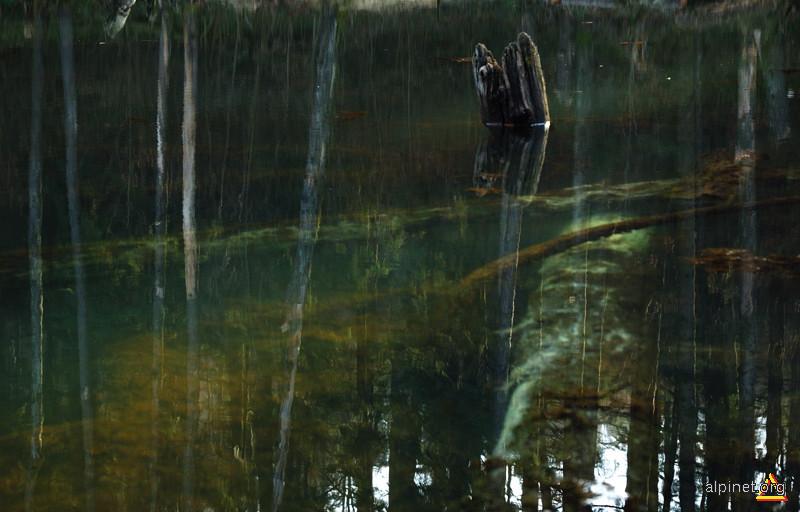 Lacul Veselaru